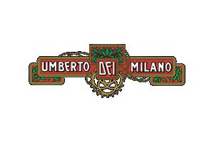Canova-La-clinica-della-bicicletta-Umberto-Dei-partner